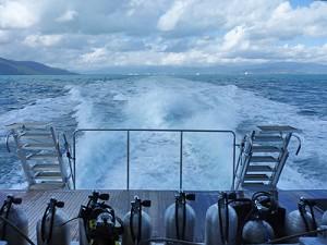 ocean freedom boat