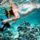 Die besten Unterwasser-Kameras im Test zum Schnorcheln